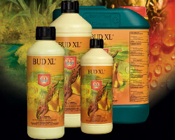 House&Garden Bud XL