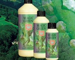 House&Garden Magic Green