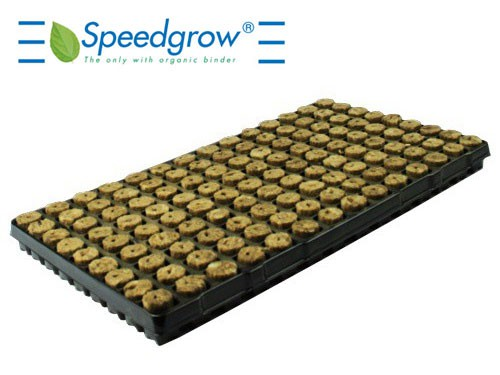 Speedgrow Green Tray 126 cubes 28x28x40mm